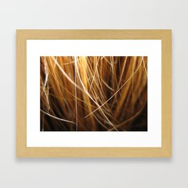 Creation Lights Framed Art Print