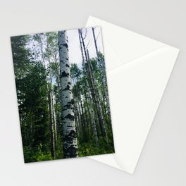 Birch Tree Forest Landscape Stationery Cards
