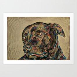 Staffy Art Print
