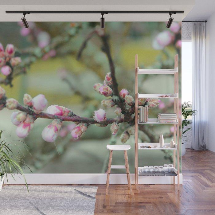 Cherry flower bud Wall Mural