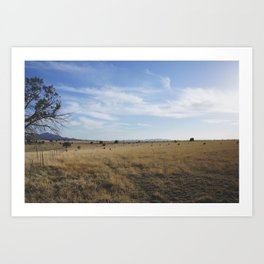 Ranch Life Art Print
