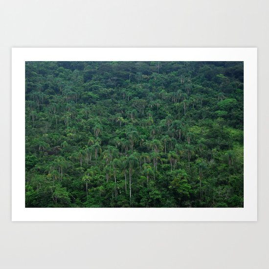 Ilha Grande Jungle Art Print