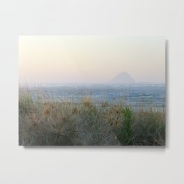 Moutohora - Whale island Metal Print