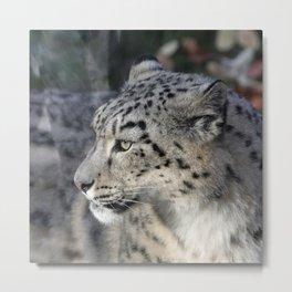 Leopard 2014-1002 Metal Print