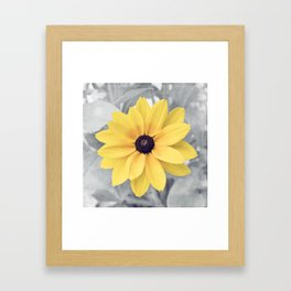 Yellow Grey Flower Photography, Yellow Gray Nature Floral Photography Framed Art Print
