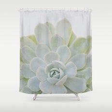 succulent 04 Shower Curtain