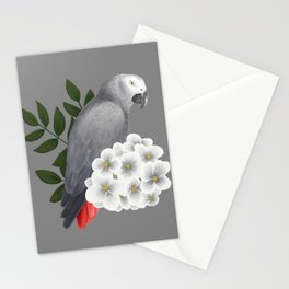 Congo African Grey Stationery Cards