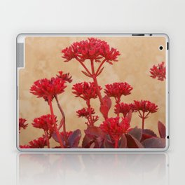 Rustic Flowers Laptop & iPad Skin