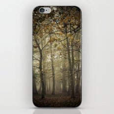Looking for something iPhone & iPod Skin