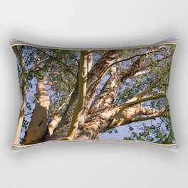 GREAT MADRONA TREE LOOKING SKYWARD Rectangular Pillow