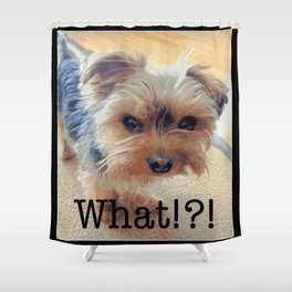 Yorkie | Dogs | Terrier | Pets | Humor | What!?! (with text) Shower Curtain