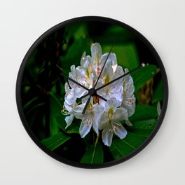 Rhododendron Bloom at Falling Water Wall Clock