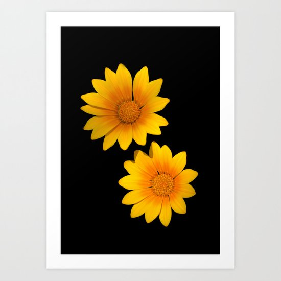Two Yellow Flowers on Funky Black Background Art Print