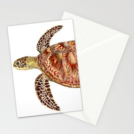 Green turtle Chelonia mydas Stationery Cards