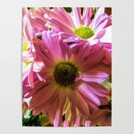 Sheltering Florals Poster