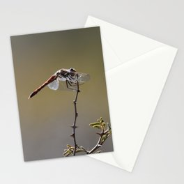 BEAUTIFUL DRAGONFLY II Stationery Cards