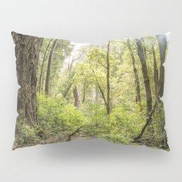 Schrader Old Growth Forest Pillow Sham