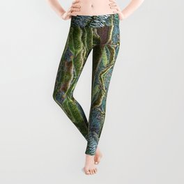YOUNG RAINFOREST MAPLES Leggings