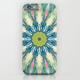 Dazzle Me In Colors iPhone Case