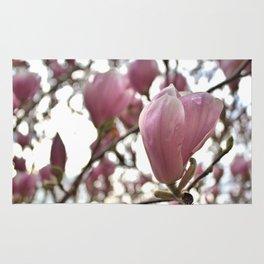 Magnolia Flowers in Soft Light Rug