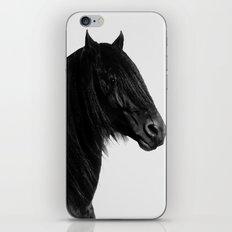Friesian stallion iPhone & iPod Skin