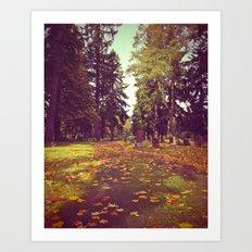 Cemetery pathway Art Print