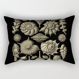 """""""Thalamorpha"""" from """"Art Forms of Nature"""" by Ernst Haeckel Rectangular Pillow"""