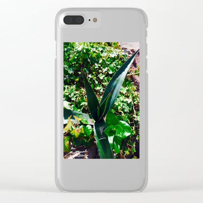 Aloe Vera at the top of Mount Monserrate in Bogota, Colombia Clear iPhone Case