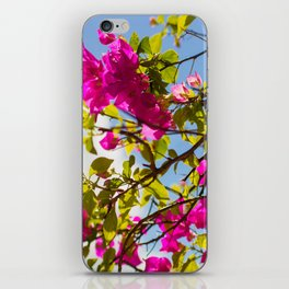 Pink Life iPhone Skin