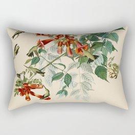 Vintage Hummingbird Illustration - Birds of America Rectangular Pillow