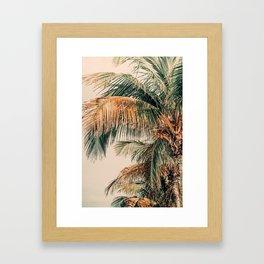 Tropical Summer Framed Art Print
