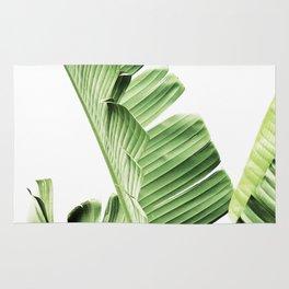 Banana leaves, Leaf, Plant, Modern, Wall Art, Tropical Rug