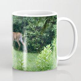 Caught Unaware (Deer) Coffee Mug