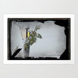 Snow Covered Lamp Post Art Print