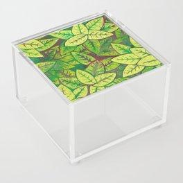 Spring leaves Acrylic Box