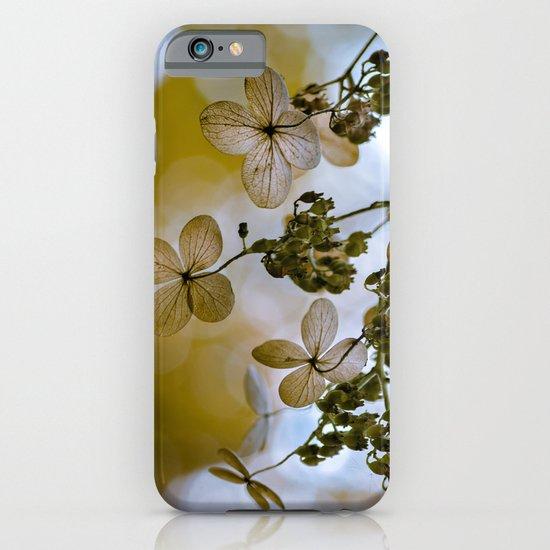 Dry hydrangea iPhone & iPod Case