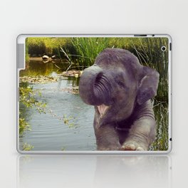 Elephant and Water Laptop & iPad Skin