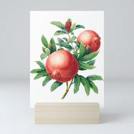 Pomegranate pattern II Mini Art Print