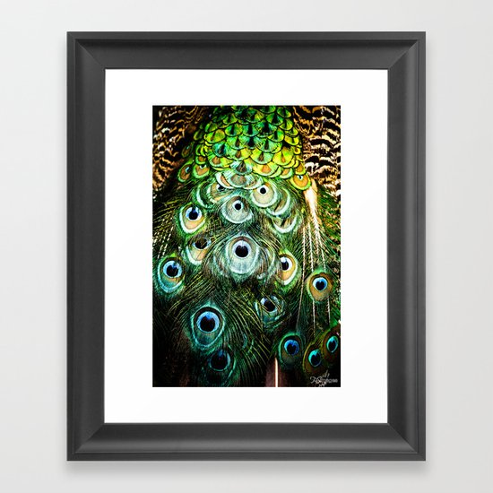 Feathers of a peacock  Framed Art Print