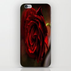 old rose iPhone & iPod Skin