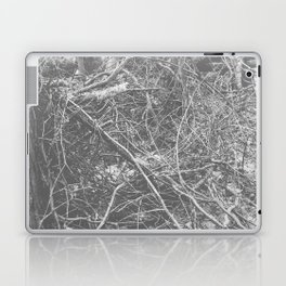 2508 Laptop & iPad Skin