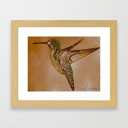 Golden Hummingbird Framed Art Print