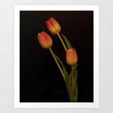Tulip, tulip, tulip Art Print