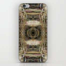 Connections 14 iPhone Skin