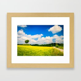 lonely tree in the fields of Italy Framed Art Print
