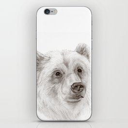 Grizzly :: A North American Brown Bear iPhone Skin