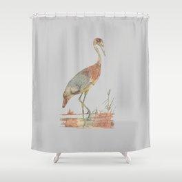 The Brolga Shower Curtain