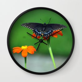 Black Swallowtail Butterfly on Mexican Sunflower Wall Clock