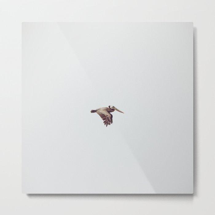 Solo Flight Metal Print