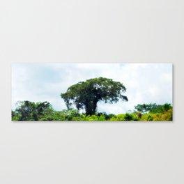 Giant tree in amazon skyline Canvas Print